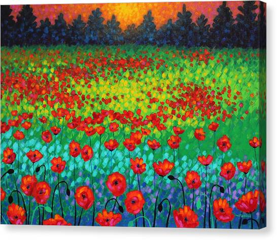 Meadow Canvas Print - Evening Poppies by John  Nolan
