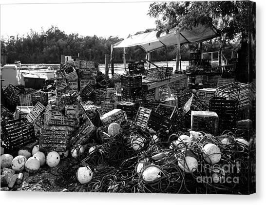 Crabbing Canvas Print - Everglades City Life by David Lee Thompson