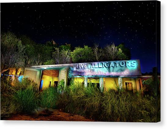 Everglades Gatorland Canvas Print