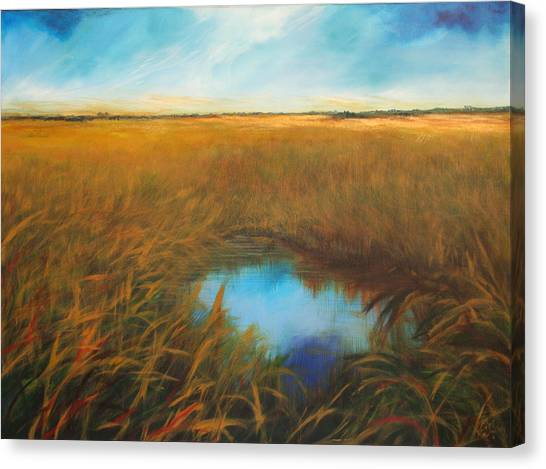 Everglades Canvas Print by Michele Hollister - for Nancy Asbell