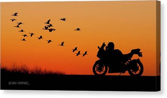 Canvas Print - Everglades Sunset by Don Durfee