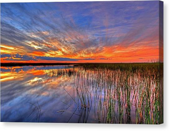 Everglades Sunset Canvas Print