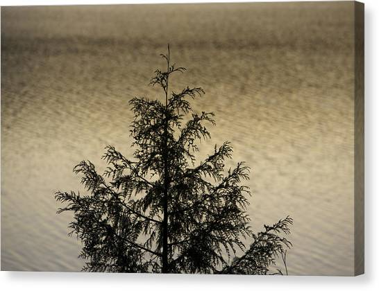 Evergreen Lake Canvas Print by Richard Steinberger
