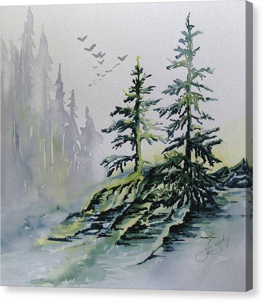 Evergreens In The Mist Canvas Print