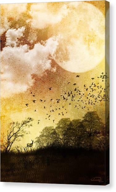 Every Day Somewhere Canvas Print by Emma Alvarez