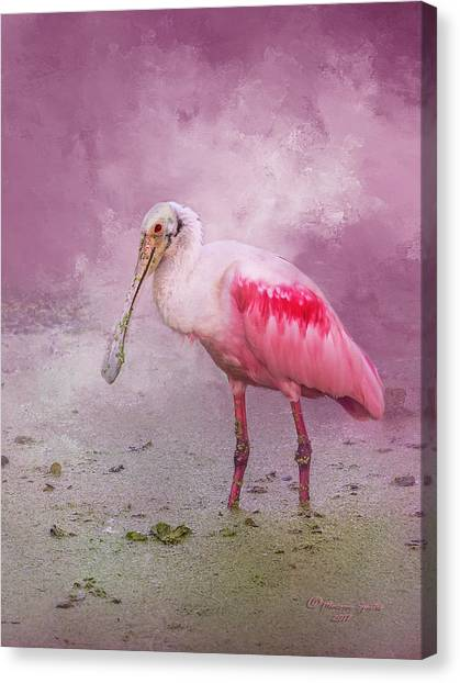 Spoonbills Canvas Print - Everything Is Rosie by Marvin Spates
