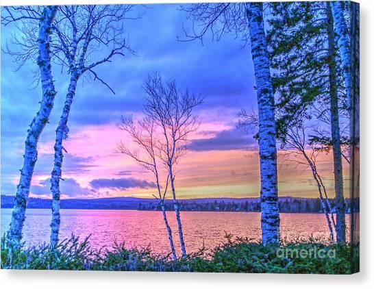 Everything Pastel Canvas Print by Brenda Ketch