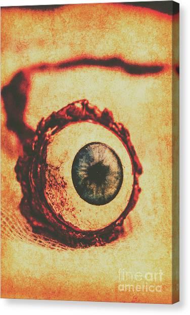 Irises Canvas Print - Evil Eye by Jorgo Photography - Wall Art Gallery