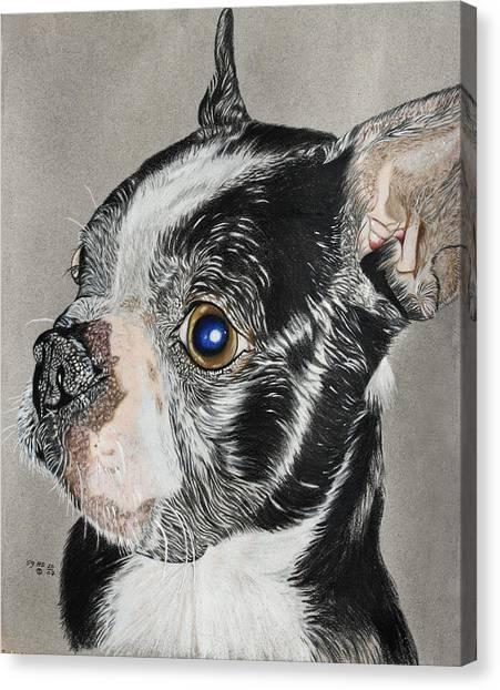 Evo Canvas Print by Ada Astacio