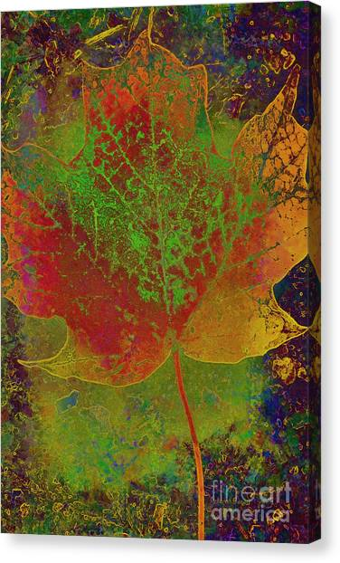 Evolution Of Life Canvas Print