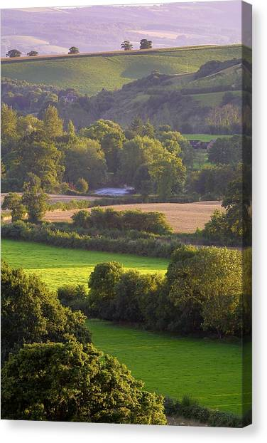 Exe Valley Evening Canvas Print by Neil Buchan-Grant
