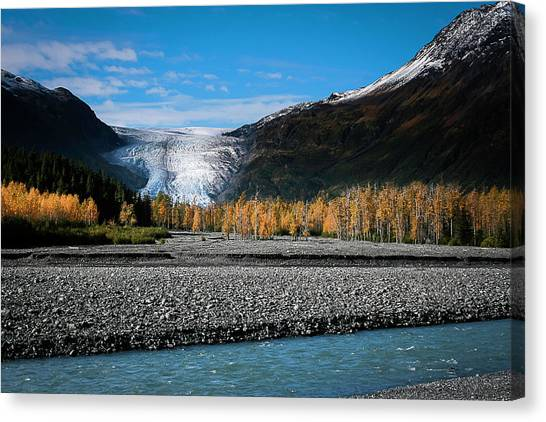 Exit Glacier Kenai Fjords National Park Canvas Print
