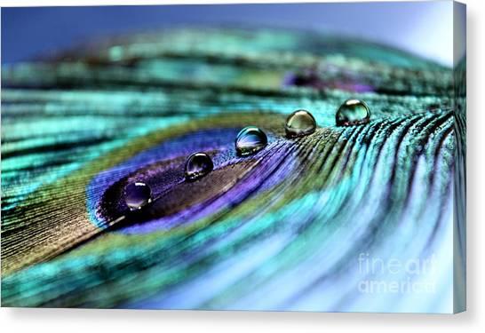 Exotic Drops Of Life Canvas Print