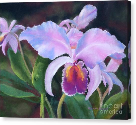 Exotic Pink Orchid Canvas Print