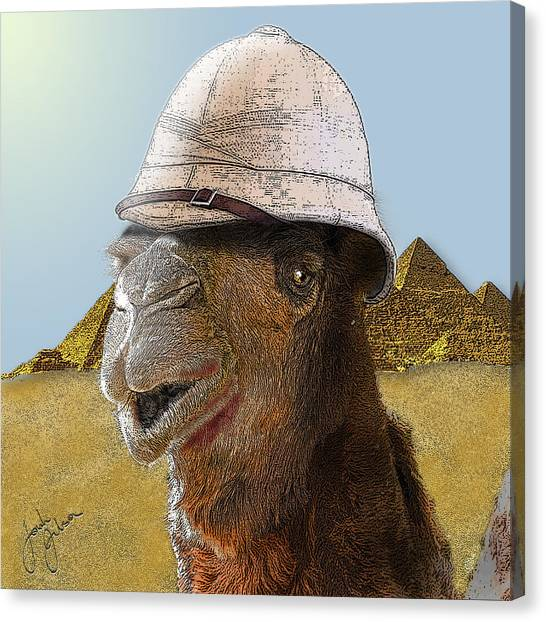 Expeditionary Camel At Giza Canvas Print