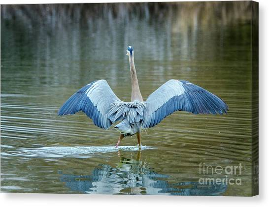 Expose Yourself To Nature Canvas Print by Emily Bristor
