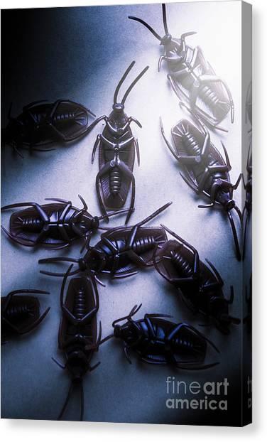 Wooden Floor Canvas Print - Extermination by Jorgo Photography - Wall Art Gallery