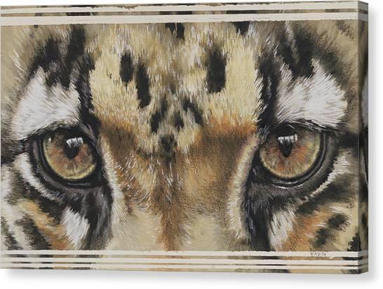 Clouded Leopard Gaze Canvas Print
