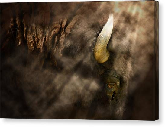 Eye Of The Hunted Canvas Print