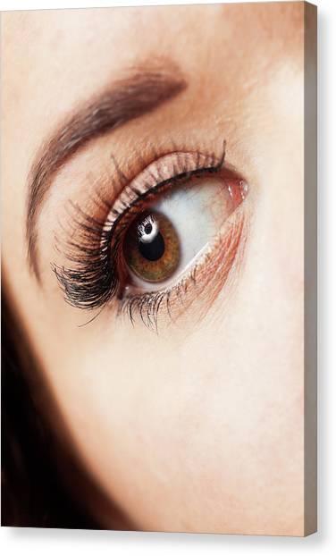 Irises Canvas Print - Eye by Samuel Whitton