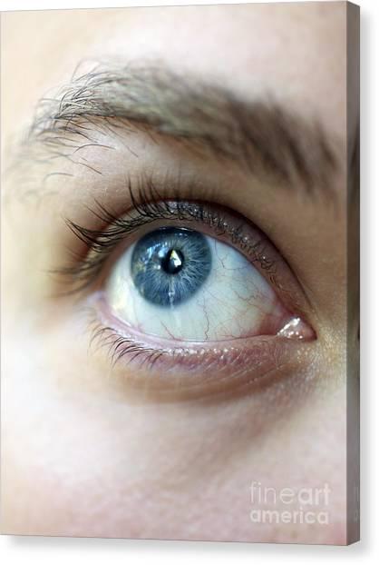Eye Up Canvas Print