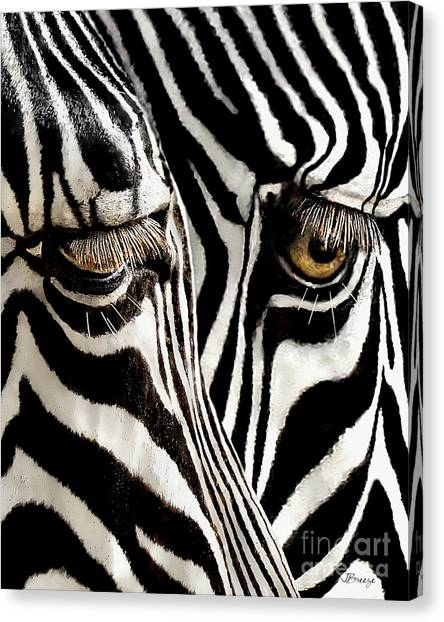 Eyes And Stripes Forever Canvas Print