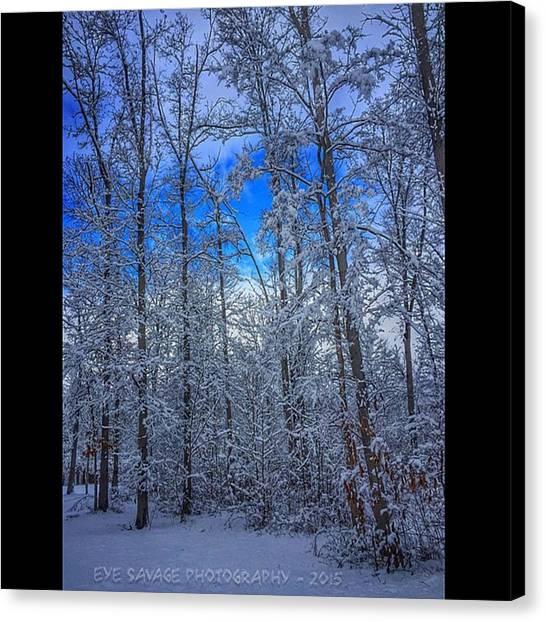 Snowball Canvas Print - #eyesavagephotography #iphone by Derrick Gillwood