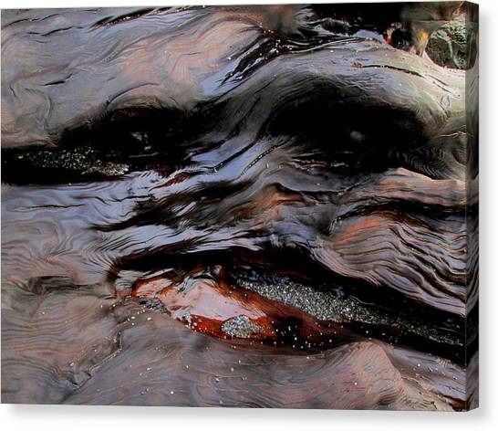 Faces In The Wood #4 Canvas Print