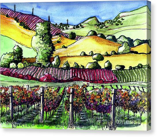 Fairfield Vineyards Canvas Print