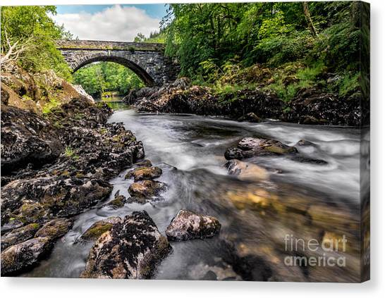 Conwy Canvas Print - Fairy Glen Bridge by Adrian Evans