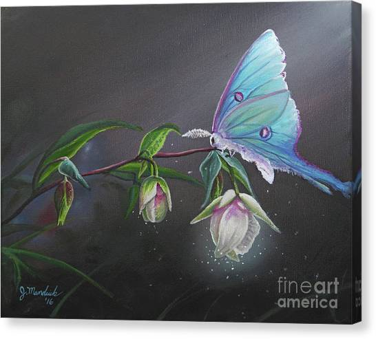 Fairy Lantern's Glow Canvas Print