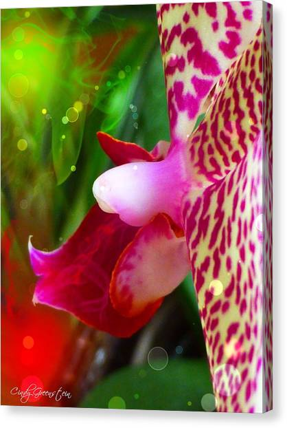 Fairy Orchid Canvas Print