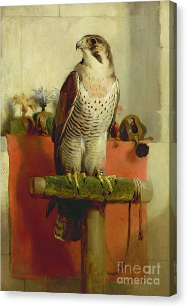 Perching Birds Canvas Print - Falcon by Sir Edwin Landseer