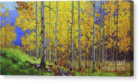 Kim Canvas Print - Fall Aspen Hill  by Gary Kim