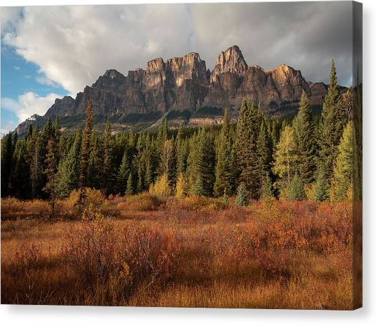 Fall At Castle Mountain Canvas Print