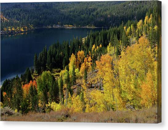 Fall At Rock Creek Lake Eastern Sierra Canvas Print