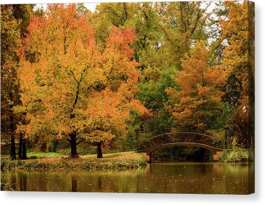 Fall At The Arboretum Canvas Print