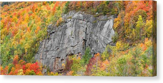 Fall Climbing Canvas Print