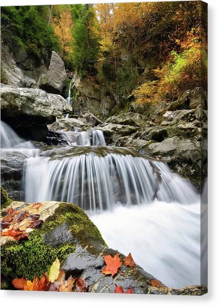 Fall Color Bash Canvas Print