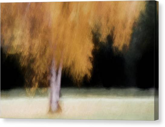 Soft Focus Canvas Print - Fall Color With Painterly Effect by Carol Leigh