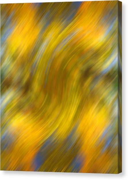 Fall Colors Abstract Canvas Print by Bob Coates