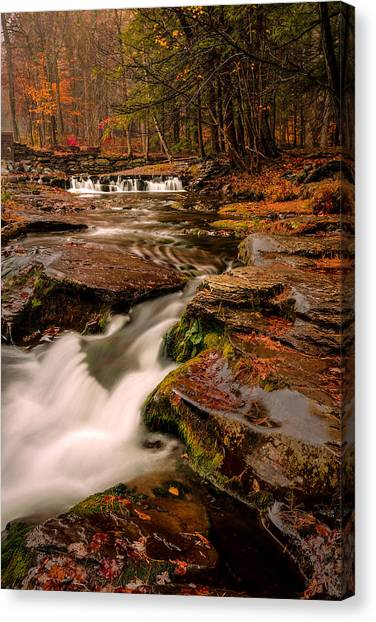 Fall Colors Around The Stream Canvas Print