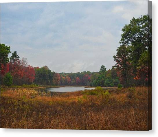 Canvas Print featuring the photograph Fall Colors At Gladwin 4459 by Wesley Elsberry