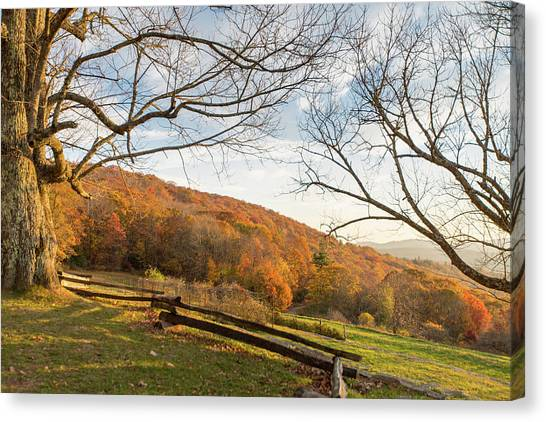 Fall Colors At The Moses Cone Estate Canvas Print