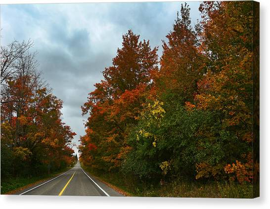Fall Colors Dramatic Sky Canvas Print