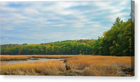 Fall Colors In Edgecomb Canvas Print