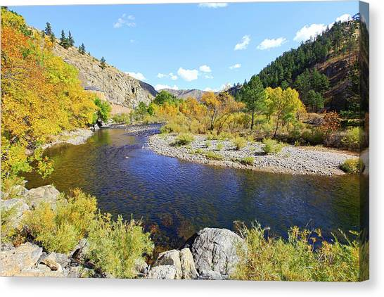 Fall Colors On The Poudre Canvas Print