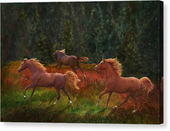 Canvas Print featuring the photograph Fall Dancers by Melinda Hughes-Berland