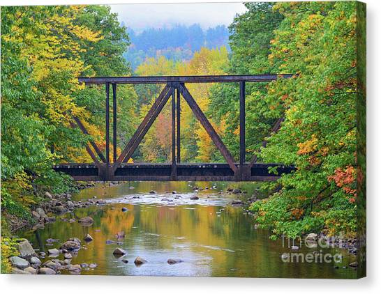 Fall Fascination Canvas Print
