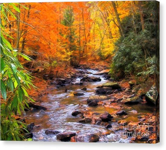Fall Fire Canvas Print by Randy Steele